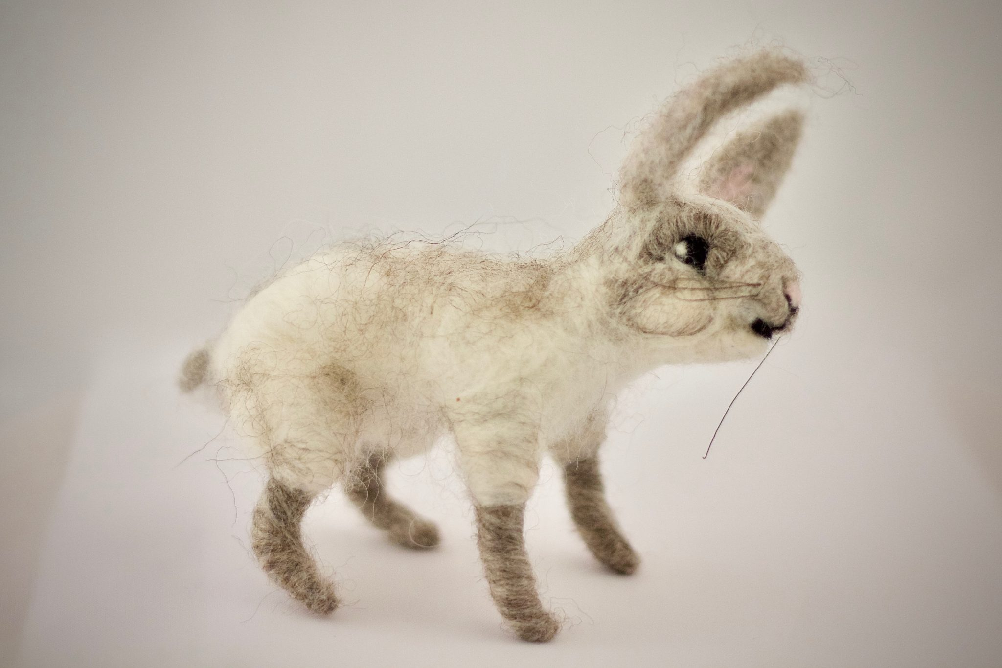 Rabbit (White & Grey)